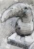 Worm appendage 3D sketch, 2017